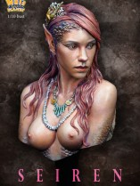 NP-b021color21