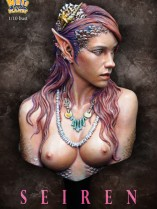 NP-b021color22
