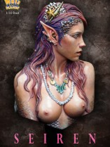 NP-b021color23